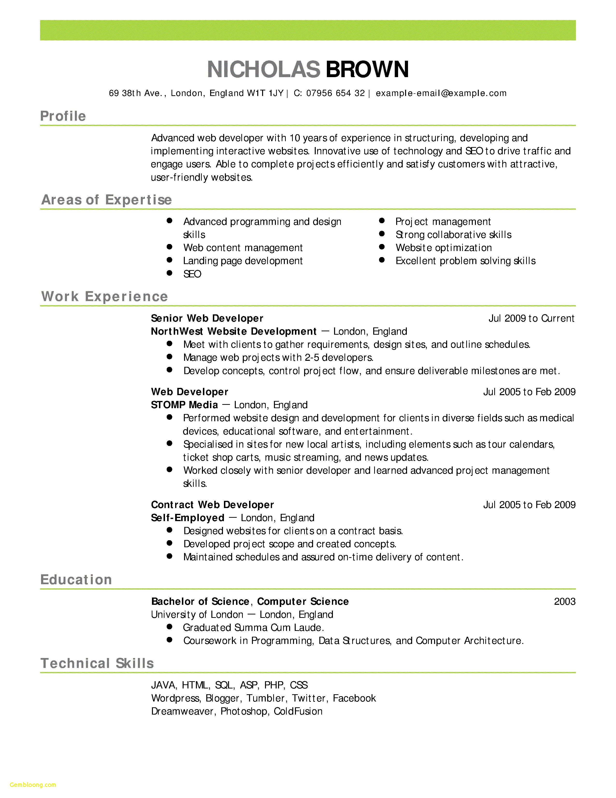 Insurance Marketing Letter Template - Insurance Resume Templates Download Professional Job Resume Template